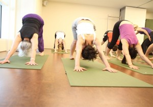 Spring Beginners Yoga Course at Embody Wellness starts in March
